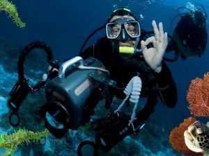 underwater photo and video recordings